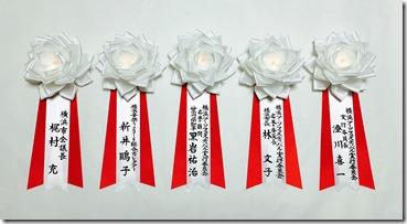 7yokohama dair